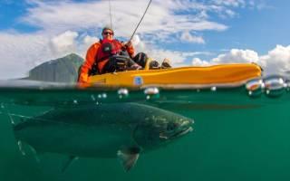 Закон о ловле рыбы