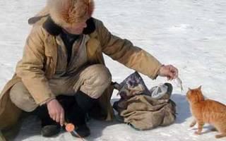 Приспособления для рыбалки своими руками