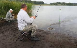 Донная ловля рыбы