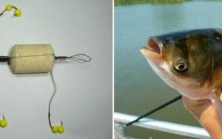 Ловля толстолобика на технопланктон