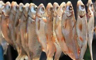 Как солить и сушить рыбу