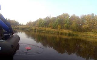 Рыбалка на кружки как рыбачить видео
