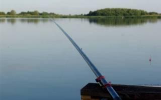 Ловля окуня на поплавочную удочку летом видео