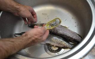 Как быстро очистить рыбу от чешуи