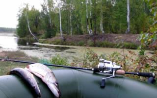 Как влияет атмосферное давление на клев рыбы