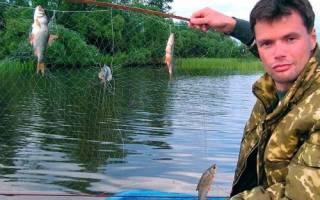 Экран для ловли рыбы