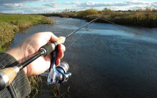 Где нельзя ловить рыбу
