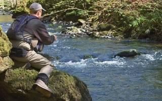Ловля на течении