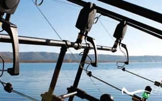 Сигнализаторы для рыбалки