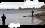 Волга река рыбалка