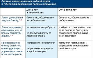 Можно ли ловить рыбу сетями в россии