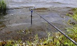 Северо западный ветер для рыбалки