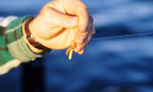 Искусственные черви для рыбалки