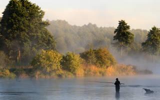 Лучшая рыбалка в карелии