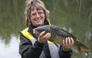Как правильно коптить рыбу в домашних условиях