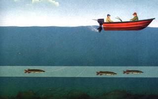 Рыболовная дорожка
